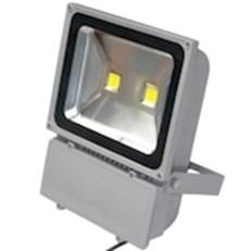 Đèn pha LED 2 BÓNG 100W
