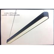 Đèn thả bóng tuýp PT THCN215 L1200