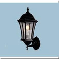 Đèn Vách Ngoại Thất VE1 VNT-1604 L210xH430