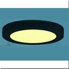 Đèn Led Gắn Nổi DH LN 4193 Ø300xH35