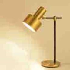 Đèn Bàn PT1 DB 503-19 Ø120xH550