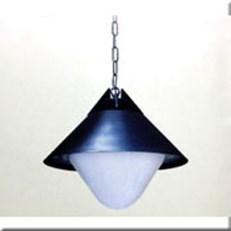 Đèn Thả Ngoại Thất TP 0117E
