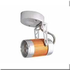 Đèn Pha Ray WQ2 N 6692