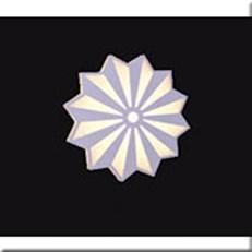 Đèn Ốp Tường VE1 V-9314 L240xH240