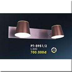 Đèn Soi Tranh VE PT-5951/2 L300