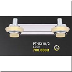 Đèn Soi Tranh VE PT-5318/2 L300