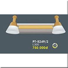 Đèn Soi Tranh VE PT-5249/2 L300