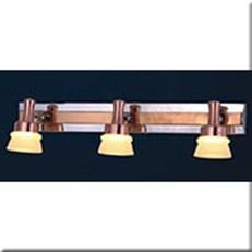 Đèn Soi Tranh IW1 5657-3 L460