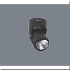Đèn Pha Tiêu Điểm LED ANFACO AFC 866D 12W