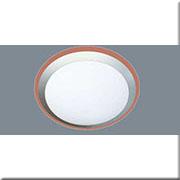 Đèn T6 Gắn Nổi ANFACO AFC 094 T6 22W
