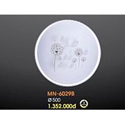 Đèn Ốp Trần Hiện Đại VE3 MN-6029B Ø500