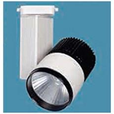 Đèn Pha Ray BMC2 FR-GD033 Ø90xH150
