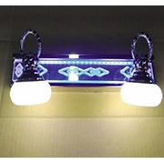 Đèn Soi Tranh PT6 RG-3670/2 N220