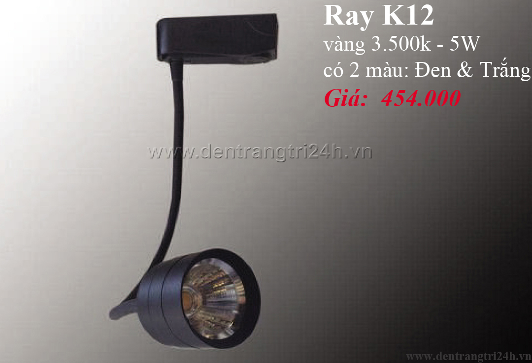 Đèn Tường Rọi PT6 RAY K12