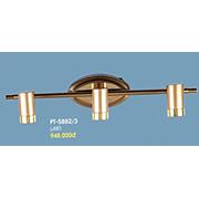 Đèn Soi Tranh VE2 PT-5882/3 L480