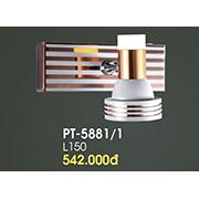 Đèn Soi Tranh VE2 PT-5881/1 L150